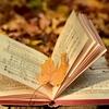 冬春夏、やがて秋に染まりし