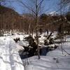 No.3170 冬合宿  上高地スキーツアー