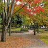 竹園西公園~つくば市とその周辺の風景写真案内(245)