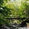【関東近郊】予約不要で行けるキャンプ場 TOP5