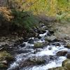 渓流釣り 流れの名称と渓流魚が居着くポイントを覚えよう