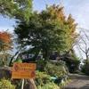 【岡山県北】美作の丘で芋掘り体験