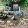 天川の水(島根県隠岐島)