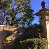 プロヴァンス旅行記④あの色彩が烟る場所へ in St Remy de Provence