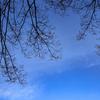 PHOTO LOG*016