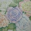 完成】無印色鉛筆でバラの花を塗ってみました☆花日和花だよりより