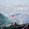 【感動!|冬のオホーツク海】網走に流氷を見に行こう!