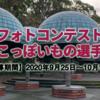 フォトコンテスト『きのこっぽいもの選手権!』