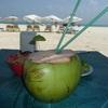 【カンクン旅行記】最終日はプラヤデルカルメンでセレブなビーチリゾートを満喫♪