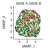 2遺伝子を重ねて発現プロット 〜シングルセル Seurat〜