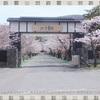 【小樽】観光スポット!趣きのある「宏楽園」の庭園を散策!桜も見頃でおすすめ☆