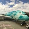 【ANA フライング・ホヌ】ホノルル - 成田 NH183 A380型機【エコノミー 機内食】