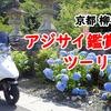 アドレスV125で京都 柳谷観音までアジサイツーリング