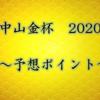 【中山金杯 2020】予想ポイント