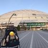 バンテリンドーム(ナゴヤドーム)のリビングボックスはどんな席?子どもと一緒に野球観戦