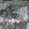 カメを飼う池を自作してみる!2号池 石積完了!