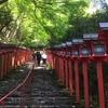 車で京都の貴船神社へ。貴船神社では気の流れを感じました