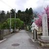 白鷹町 鮎貝城の歴史と史跡をご紹介!🏯