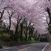 愛川町 坂本青少年広場