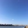 2018年3月17日 いつもの猪名川・藻川合流付近へシーバス釣行│新年あけましておめでとうございます(笑)
