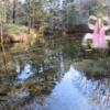 神の子池と北海シマエビ踊り食い 網走~尾岱沼北海シマエビの旅⑤