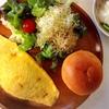 糖質制限ブログを主婦が始めて1か月。成功する食事内容の詳細を公開!!