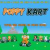 <<poppy kart>>これはまじでスーパーファミコンのマリオカートwww