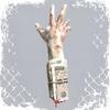 #DOGMA #LORD8ERZ #JNKMN #DROPOUTSIDING