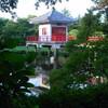 高源院の池