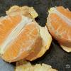 柑橘の王様 熊本県産「訳あり デコみかん」9kgが届いたから食べてみる! ベリーフルーツ!