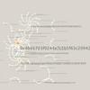 ERC20トークンの取引イベントログを抽出してネットワーク図を作成する