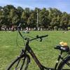 ベルリン観光:レンタサイクルで街を駆け抜けろ!メジャーどころを1日で回ってみた