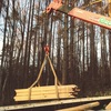 無垢杉板フローリング到着!