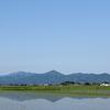 ◆5/20    新緑の 湯ノ沢岳へ①