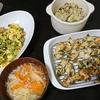 鶏むねパン粉焼き、ゴーヤチャンプルー、キャベツ、味噌汁