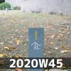 週報 2020W45