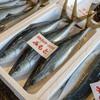 2018年11月8日 小浜漁港 お魚情報