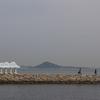 いい感じのねこと灯台の存在するよい島の男木島