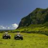 ハワイ・クアロア牧場