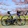 妻と行く。桃と桜のサイクリング2019 ~リニアライドやまなし中央~