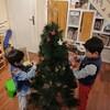 【長く使えるおすすめオーナメント】今年もクリスマスツリーを飾りました