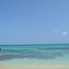 世界に誇るサンゴ礁の群生地、「池間島」