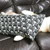 猫のクッション抱いて寝る犬