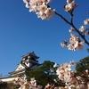 39.高知県 ~2012年4月 高知城と桜を楽しむ旅③~
