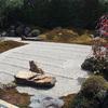 左京区不動産 テライズホーム|そうだ、弘源寺:春の特別公開に行こう。
