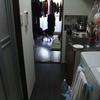 部屋の掃除が無事終了しました!これで年が越せそうです。