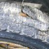 タイヤがバースト! でも走る。