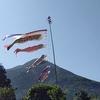屋久島グッドモーニング第6回 碧い海と青い森が好き 朝7時開店