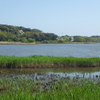 佐鳴湖でまったりした中でまたもや○○○しちゃいました(恥)~フリーな撮影会&がっつり飯をいただいた日~