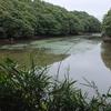 八幡池(茨城県行方)